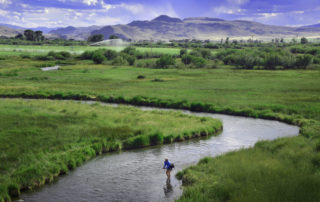 Fly Fishing Poindexter Slough in Dillon Montana