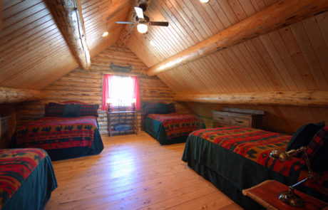 Salmonfly Loft Style Cabin on the Big Hole River