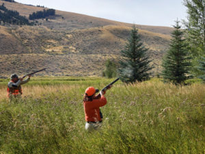 Pheasant Hunting in Montana at the Silver Bow Club Preserve