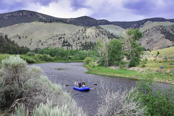 Big Hole River In Montana A Blue Ribbon Trout Stream
