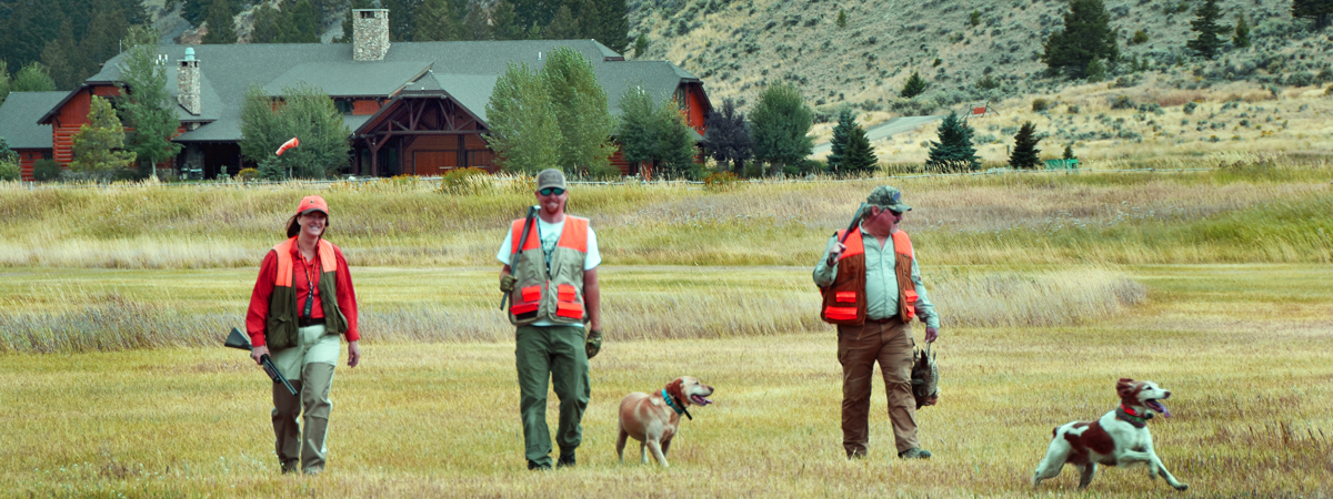 Pheasant Hunting Preserve at the Silver Bow Club in Montana