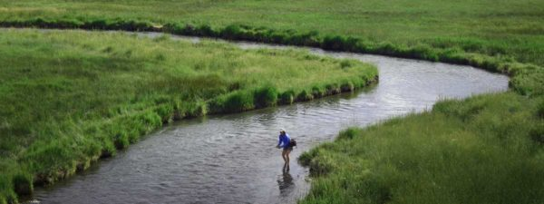 Montana Fly Fishing Trips for Groups or Trout Unlimited TU