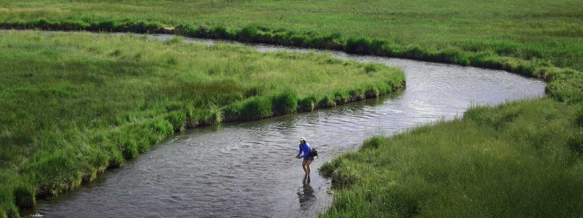 Poindexter Slough of the Beaverhead River, Montana