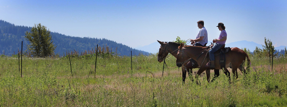 Horseback Riding in Montana Luxury Montana Fishing Resort