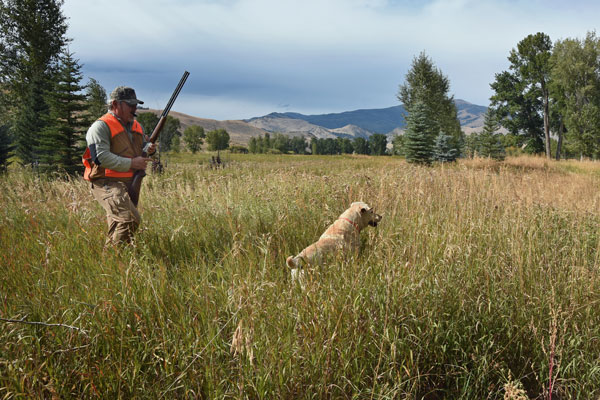 Montana Luxury Pheasant Hunting Lodge