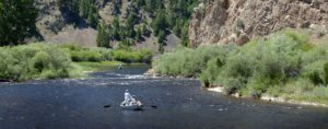 Want to Go Fishing in Montana