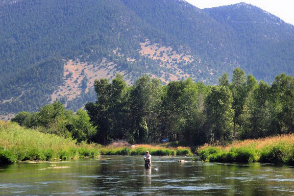 Fly fish the Ruby River in Montana