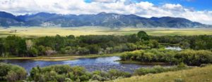 The Jefferson River in Montana