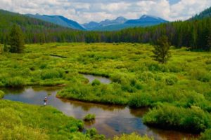 Wise River Headwaters in Pioneer Mountains Montana