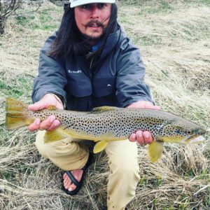 Spring Brown Trout Fishing on the Big Hole