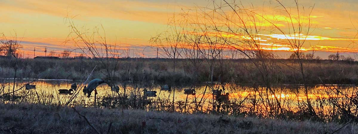 Hunting ducks at dawn in southwest Montana