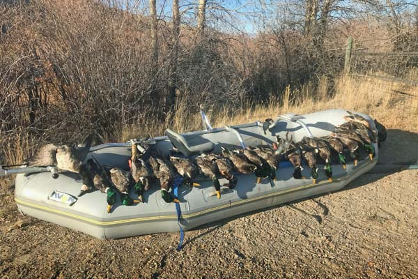 Shooting mallards and geese on the Beaverhead river in Montana